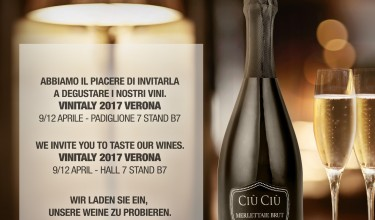 Vinitaly 2017: come and visit our stand!