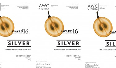 Three medals for Ciù Ciù wines at AWC Wien 2016